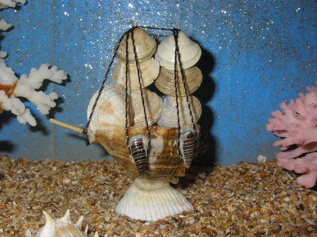 Поделки кораблики из ракушек 29